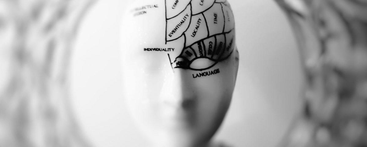 Упаковка и презентация продукта с точки зрения нейронаук